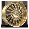 FS14 in Gold